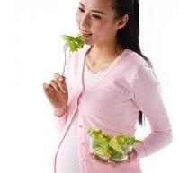 盤點:9大有助孕婦補鐵補血的食物