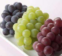懷孕初期吃什么水果好