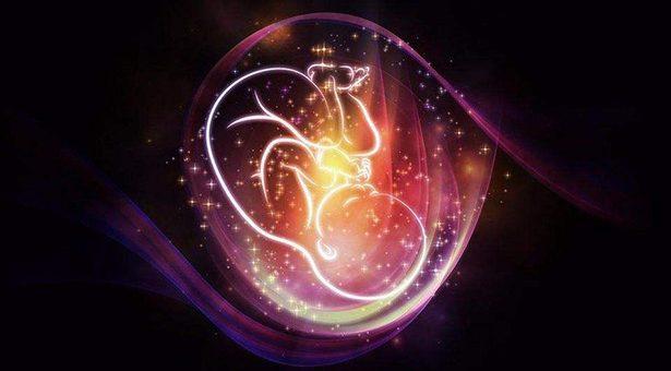 每個月的胎兒成長像什么果蔬